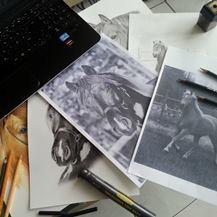 Pferde vom Foto zeichnen lassen