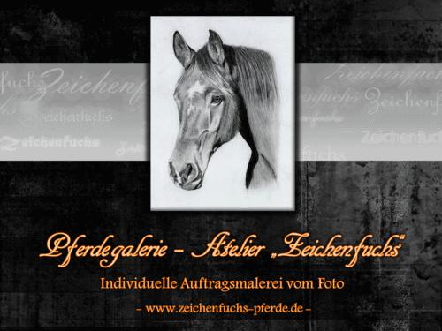 Zeichnungen und Gemälde von Pferden