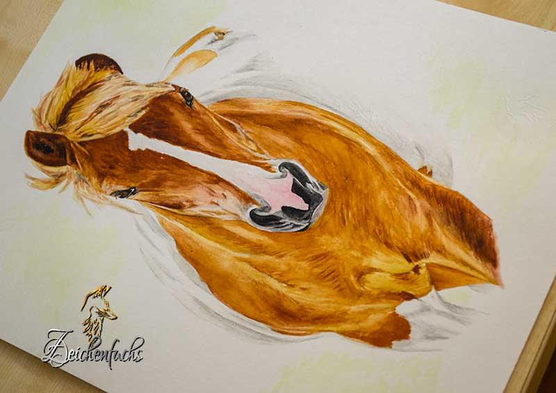 Aquarellportrait eines Pferdes