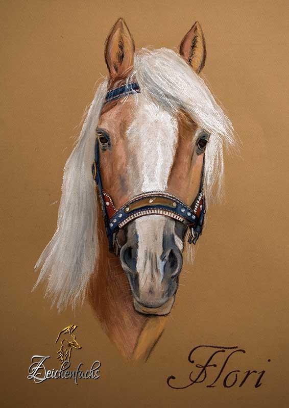 Pastellportrait eines Pferdes